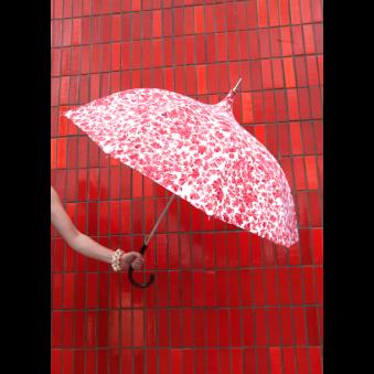 Parapluie Au Vent