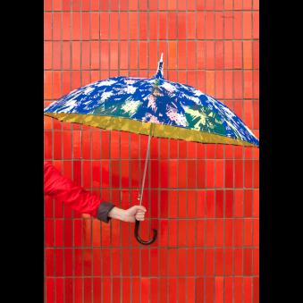 Parapluie Fleurs d'hiver