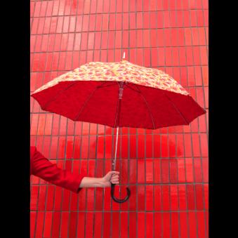 Parapluie Kiwis